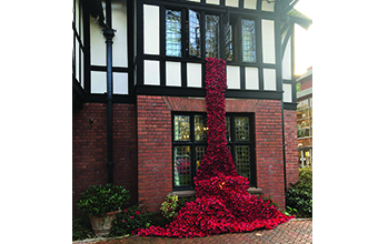 Hereford care home creates a waterfall of poppies